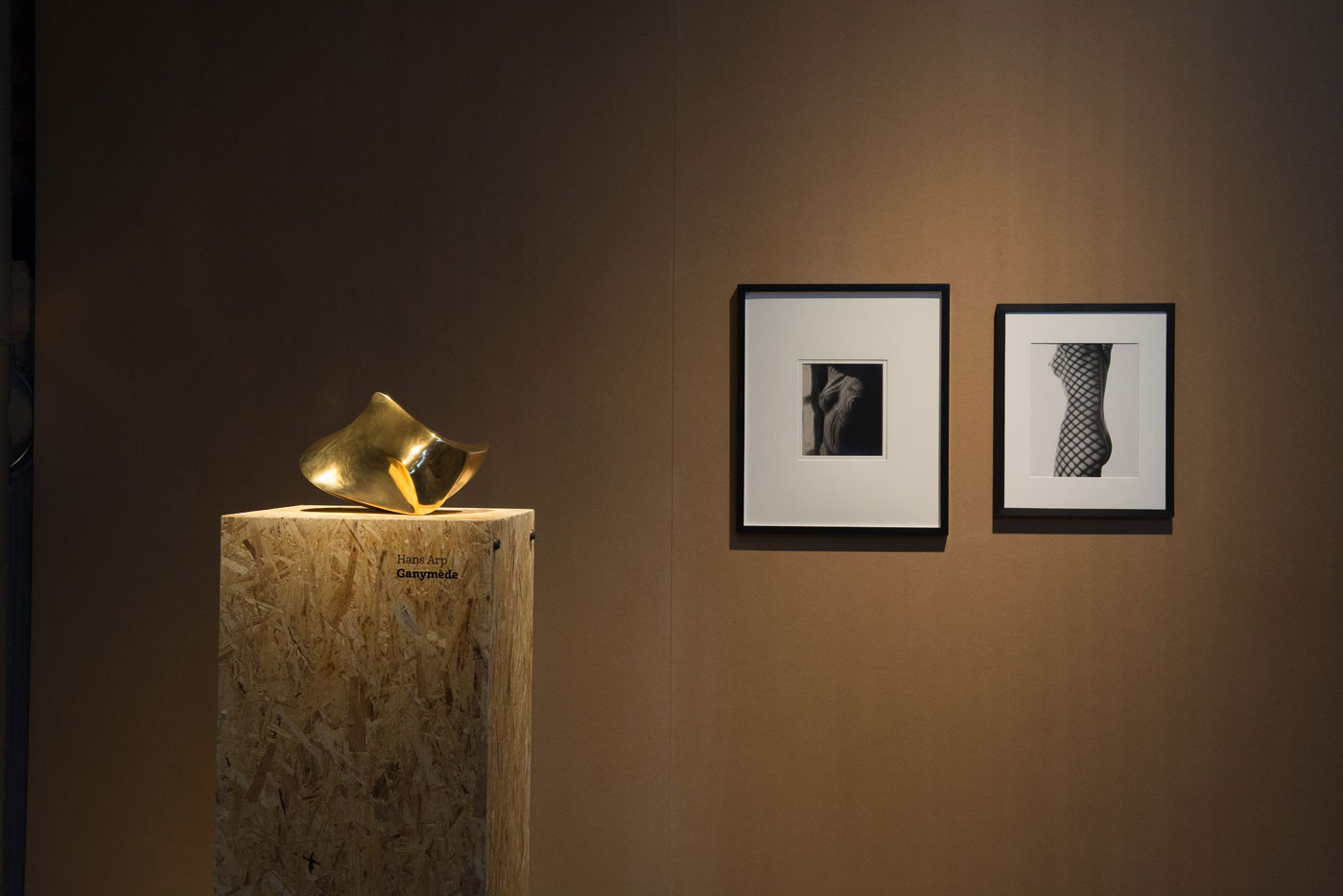 Blue Moon 08: Exhibition view with works by Hans Arp and Man Ray
